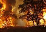 Texas Wildfires-sh