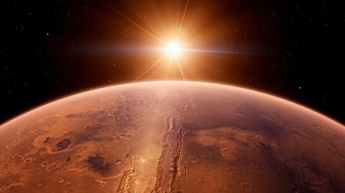 101_Mars_EN_Reduced_CO_NLSubs_NL_____nl_mux__1